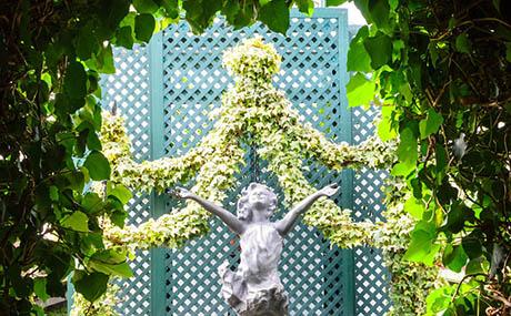 Inspiratie deco bloemen planten beeld